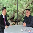 중국,관계,북한,김정은,수교,위원장,주석,전략적,미국,양국