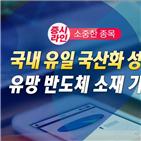 국산,수혜,반도체,국내,성공,한국경제