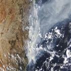 산불,호주,피해,진화,헬기,동부,크로