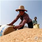 아시아,문제,식품,투자,중국