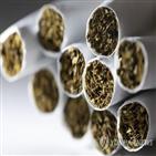 담배,조사,반덤핑,미국
