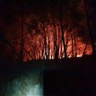 화재,발생,소방당국,신불산