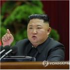 북한,전원회의,미국,회의,이번,가운데,선언,위원장,당국,결과