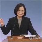 대만,중국,반침투법,본토,개입,대선