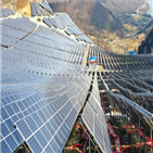 태양광,신재생에너지,국내,매출,정부,제조업체,고용,정책,중국산,투자