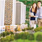 토지,지난해,지방,아파트,미분양,투자,부동산,낙찰가율,투자자,대구