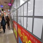 서울,대책,집값,아파트,규제,정부,지역,재건축,공급,매매가격