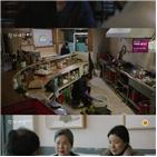박성연,방송,강회,영화,검사