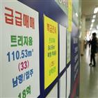 정부,집값,부동산,아파트,가격,서울,정책,자산,실패,하락