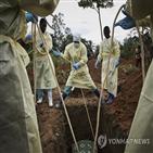 에볼라,아프리카,보건,코로나19,대응,사람,대처,역할,경험