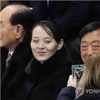 김여정,담화,제1부부장,청와대,대통령,위원장,북한