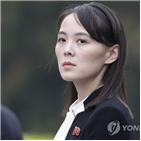 제1부부장,대통령,남조선,발언