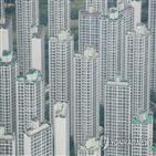 부동산,법인,주택,정부,규제,규제지역