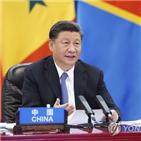 아프리카,중국,시진핑,주석,코로나19,채무,국가,연장
