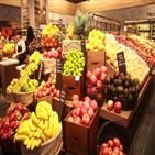 과일,서비스,구독,제품,과자,큐레이션,구독자,와인