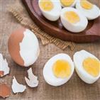 다이어트,달걀,감량,과일,채소,체중