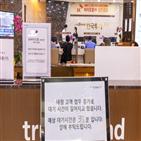 SK바이오팜,청약,매출액,실적,경쟁률,노바메이트