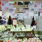 가격,물가,소비자물가,축산물,코로나지원금,통계청,하락,상승률,요인