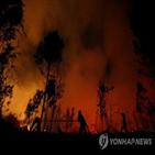산불,비상사태,인도네시아,중앙,선포,건기,작년,연기,코로나19