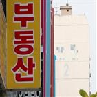 투자자,아파트,서울,외지인,지방,매물,최근,지역,대책,전세