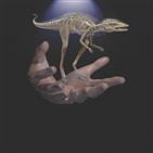 익룡,공룡,화석,콩고