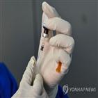 코로나19,연구진,백신,사망률,결핵백신,결핵