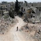 정부군,시리아,반군