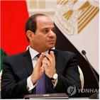 리비아,이집트,터키,내전,대통령,하프타르,의회,파병