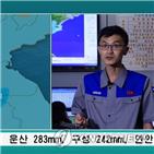 지역,폭우,일부,발령,대응
