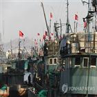 중국,어선,오징어,조업,자국,금어기,불법,설정