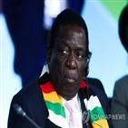 짐바브웨,음낭,대통령,정부,코로나19