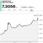 터키,정책,구제금융,신청,정부,리라화,달러