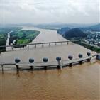 4대강,홍수,의원,대통령,이재오