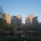 왕징,아파트,중국,월세,한국인,부동산,베이징,코로나19,가격