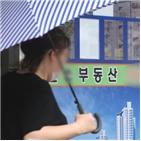전셋값,서울,아파트,평균,전세,지역,지난달,기준,상승