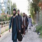 탈레반,포로,아프간,석방,정부,시작,미국