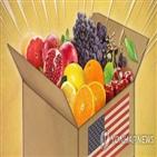 장마,과일,인기,수입과일