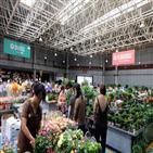 중국,화훼시장,칠석,코로나19
