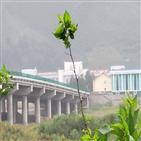 북한,두만강,다리,북중,코로나19,봉쇄,사람,남양,중국,사태