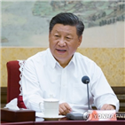 중국,대외,개방,확대