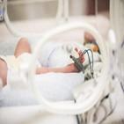 병원,신생아,시트,사망,원인,감염