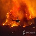 산불,화재,지역,주민,발생,폭염