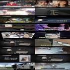 고양이,사고,발생,사건,상자,실화탐사대,사람,차량