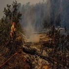 화재,가뭄,브라질