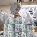환율,달러,외환당국,가치,개입