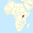 우간다,대통령,코로나,아프리카,국경