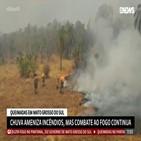 브라질,아마존,화재,열대우림