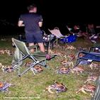 음식,캠핑,호주