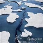 북극,면적,올해,얼음,해빙
