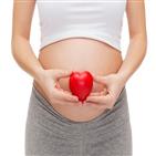 보험,태아,가입,비교,어린이보험,임신,보장